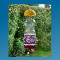 Biologische wespenval voor limonadefles